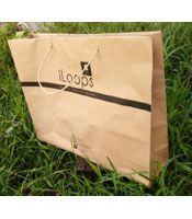 iLoops 2